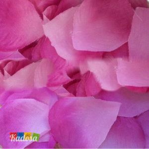 petali rosa viola lilla - kadosa