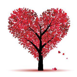 Le 4 Regole per un San Valentino Perfetto!