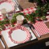 Set Pic Nic quadretti rossi pasqua festa compleanno coppia san valentino -