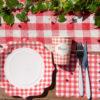 Set Pic Nic quadretti rossi pasqua festa compleanno coppia san valentino